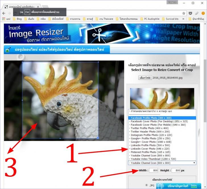 ย่อภาพ เพื่อทำภาพโปรไฟล์ Facebook อินสตาแกรม ได้ง่ายๆ ด้วยเครื่องมือของ Thaiware