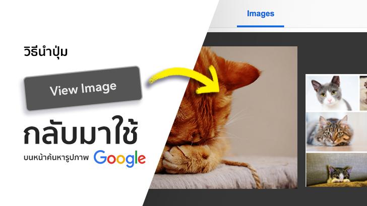 วิธีนำปุ่ม View Image กลับมาใช้งานบนหน้าค้นหารูปภาพ Google (บน PC)