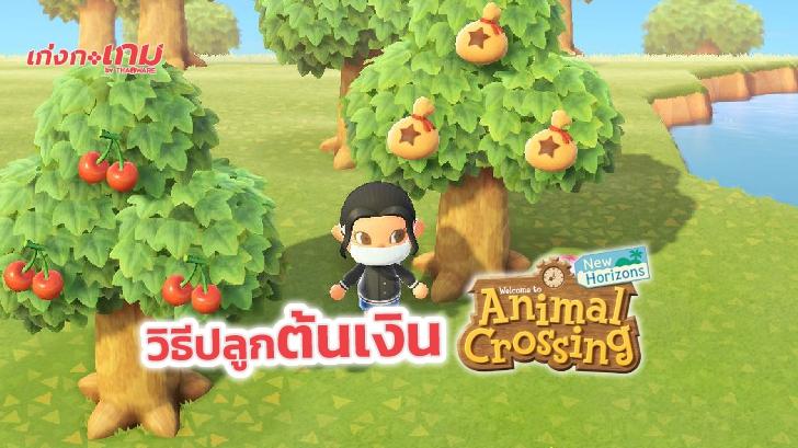 วิธีปลูกต้นเงินใน Animal Crossing: New Horizons